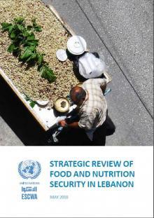 food-security-nutrition-lebanon